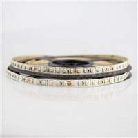 Comus Led strip Shortpitch 24V 3k Single colour LEDCLSS96830